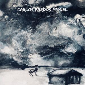 Carlos Pardos Miguel